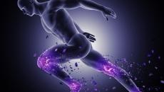 Impacto e Desgaste Osteoarticular- Mobilidade e Envelhecimento